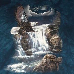 2000 The Mountain Bald Eagle USA Vintage Shirt US